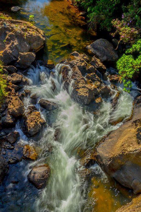 Río Frío, fuente de vida