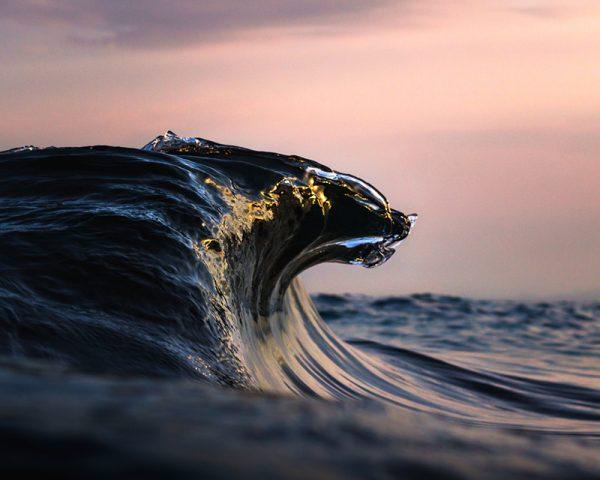 Rugido del Mar