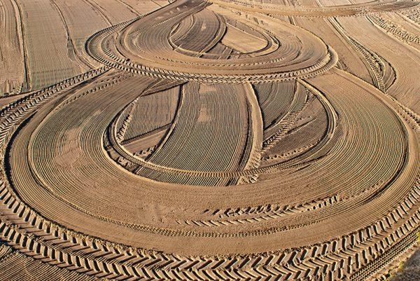 Curvas, lineas y arena